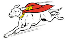 Krypto in flight.JPG